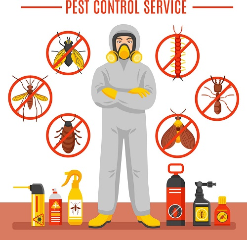, Cockroaches Control Services